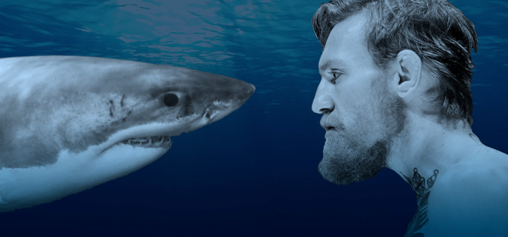 People I Would Like to See Race a Real Shark on TV 1