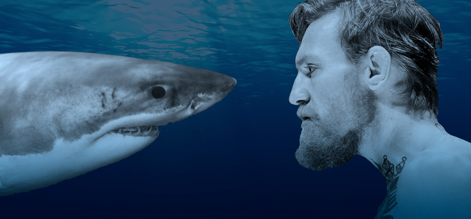 People I Would Like to See Race a Real Shark on TV